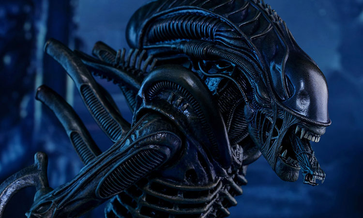 alien-covenant-movie-2017-2_750x450.jpg